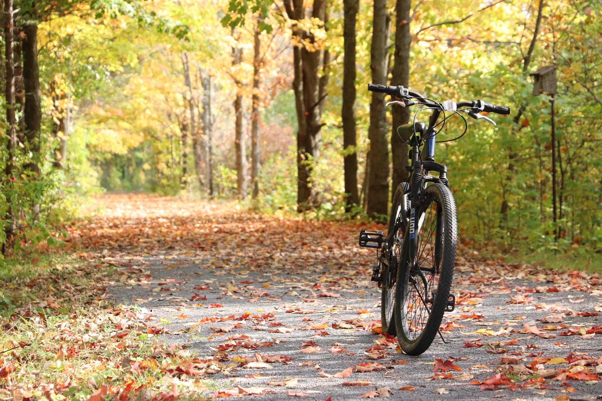 Mountain Bike on the Cataraqui Trail